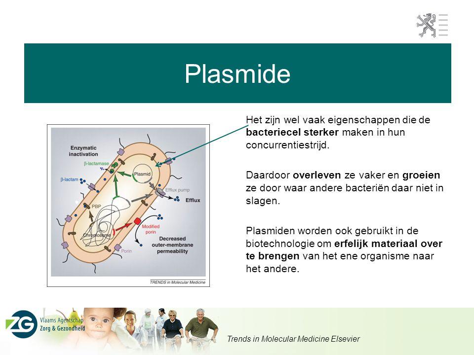 Plasmide Het zijn wel vaak eigenschappen die de bacteriecel sterker maken in hun concurrentiestrijd. Daardoor overleven ze vaker en groeien ze door wa