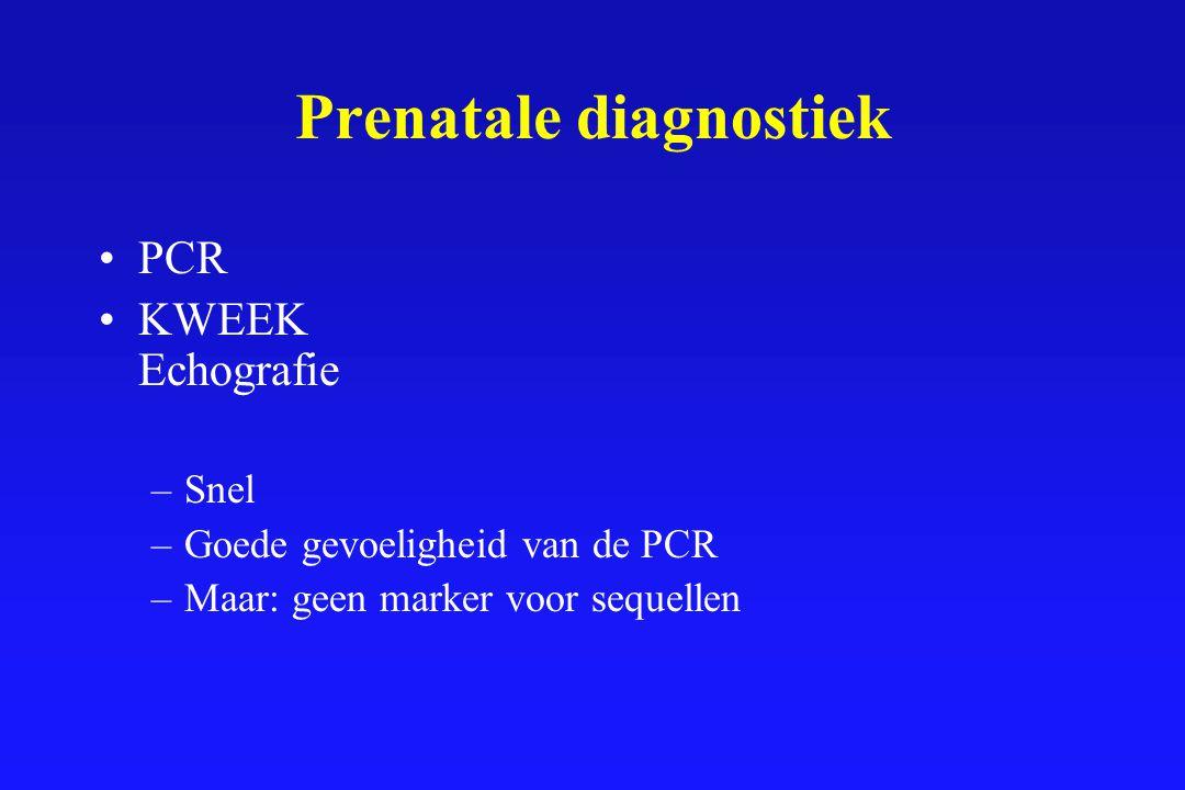 Prenatale diagnostiek PCR KWEEK Echografie –Snel –Goede gevoeligheid van de PCR –Maar: geen marker voor sequellen