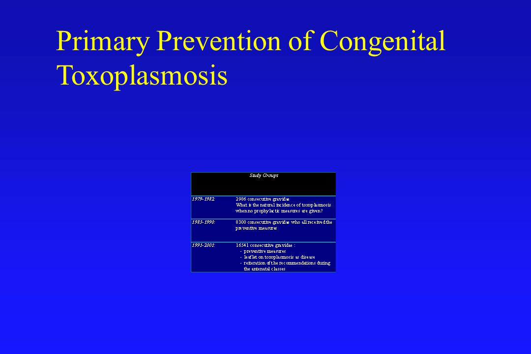 Primary Prevention of Congenital Toxoplasmosis