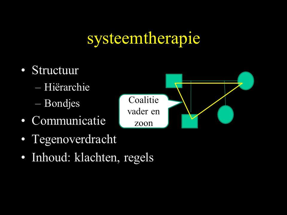 systeemtherapie Structuur –Hiërarchie –Bondjes Communicatie Tegenoverdracht Inhoud: klachten, regels Coalitie vader en zoon