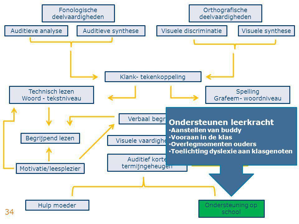 34 Fonologische deelvaardigheden Auditieve analyseAuditieve synthese Orthografische deelvaardigheden Visuele discriminatieVisuele synthese Technisch l