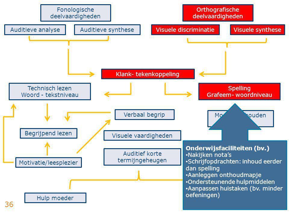 36 Fonologische deelvaardigheden Auditieve analyseAuditieve synthese Orthografische deelvaardigheden Visuele discriminatieVisuele synthese Technisch l