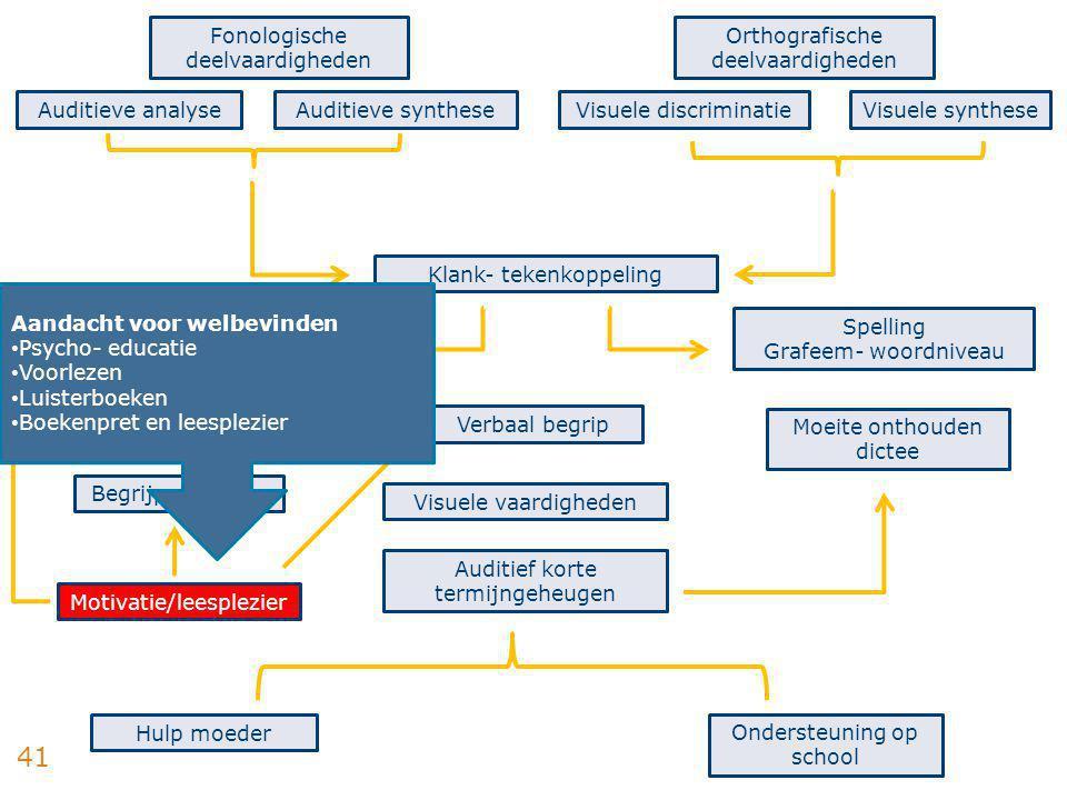 41 Fonologische deelvaardigheden Auditieve analyseAuditieve synthese Orthografische deelvaardigheden Visuele discriminatieVisuele synthese Technisch l