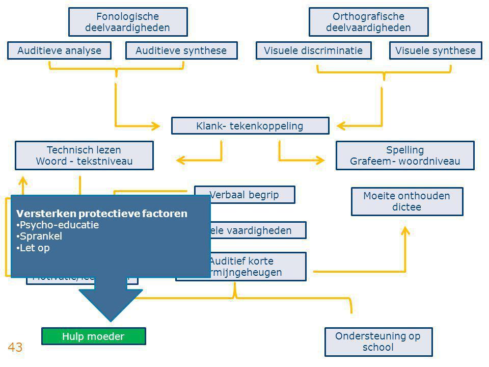 43 Fonologische deelvaardigheden Auditieve analyseAuditieve synthese Orthografische deelvaardigheden Visuele discriminatieVisuele synthese Technisch l