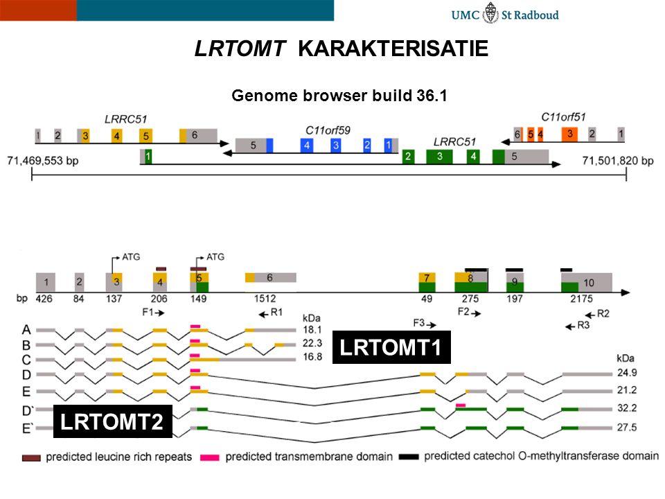 LRTOMT KARAKTERISATIE Genome browser build 36.1 LRTOMT1 LRTOMT2