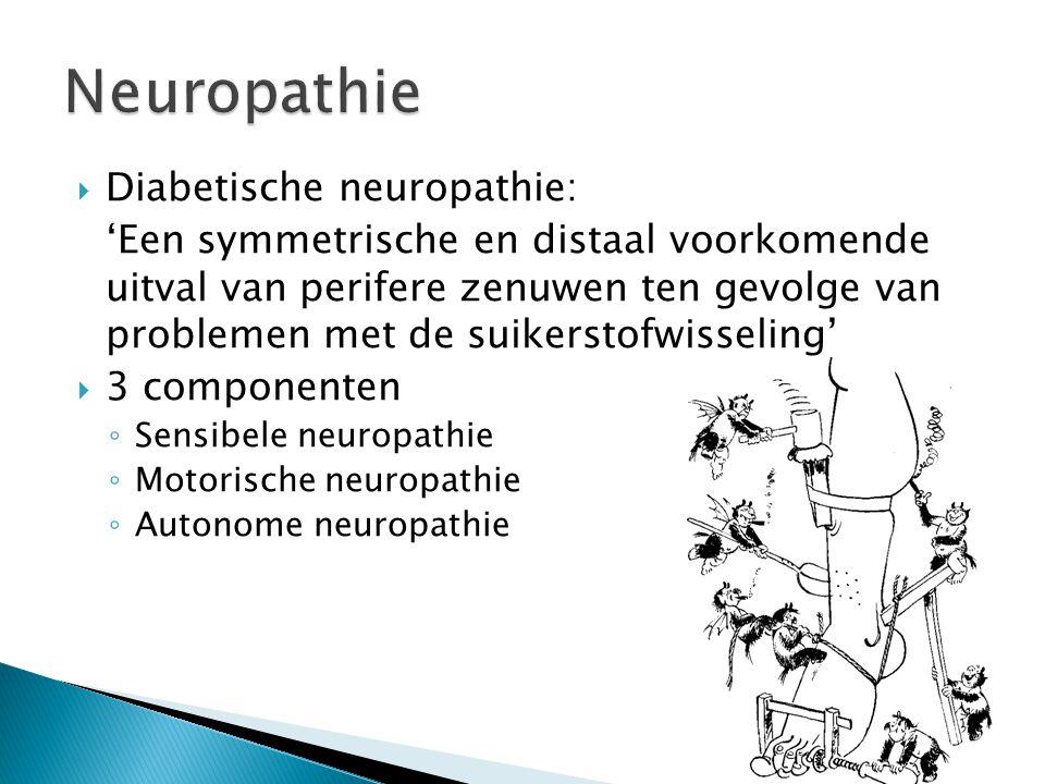  Diabetische neuropathie: 'Een symmetrische en distaal voorkomende uitval van perifere zenuwen ten gevolge van problemen met de suikerstofwisseling'  3 componenten ◦ Sensibele neuropathie ◦ Motorische neuropathie ◦ Autonome neuropathie
