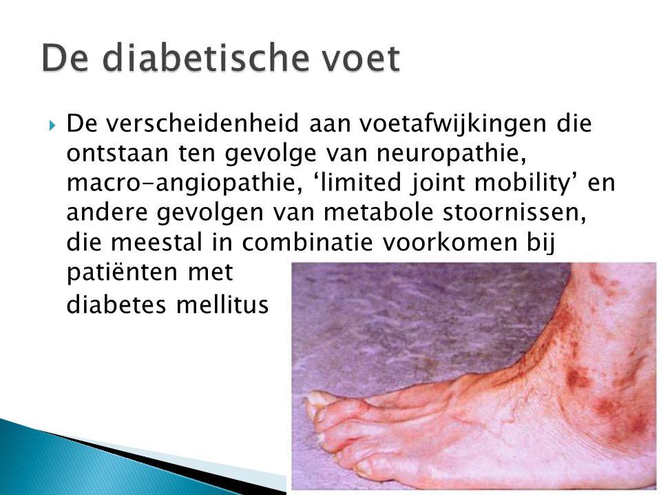  De verscheidenheid aan voetafwijkingen die ontstaan ten gevolge van neuropathie, macro-angiopathie, 'limited joint mobility' en andere gevolgen van metabole stoornissen, die meestal in combinatie voorkomen bij patiënten met diabetes mellitus