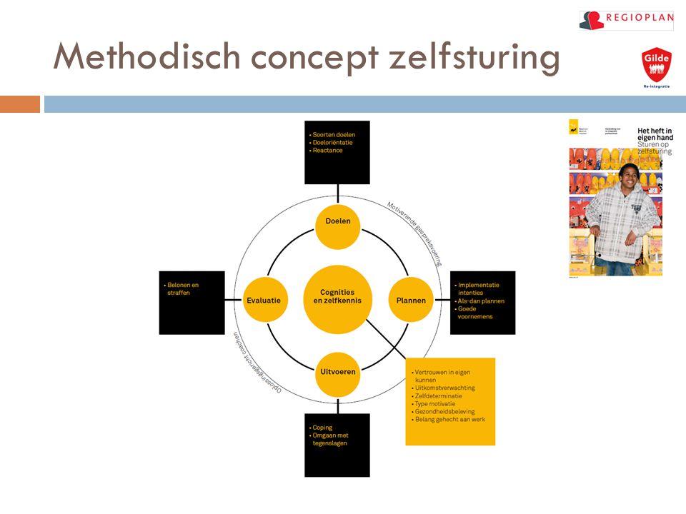 Methodisch concept zelfsturing