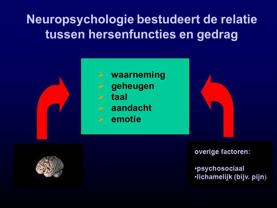  waarneming  geheugen  taal  aandacht  emotie overige factoren: psychosociaal lichamelijk (bijv. pijn ) Neuropsychologie bestudeert de relatie tu