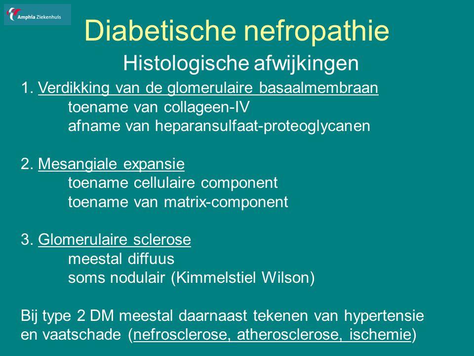 Diabetische nefropathie Histologische afwijkingen 1.
