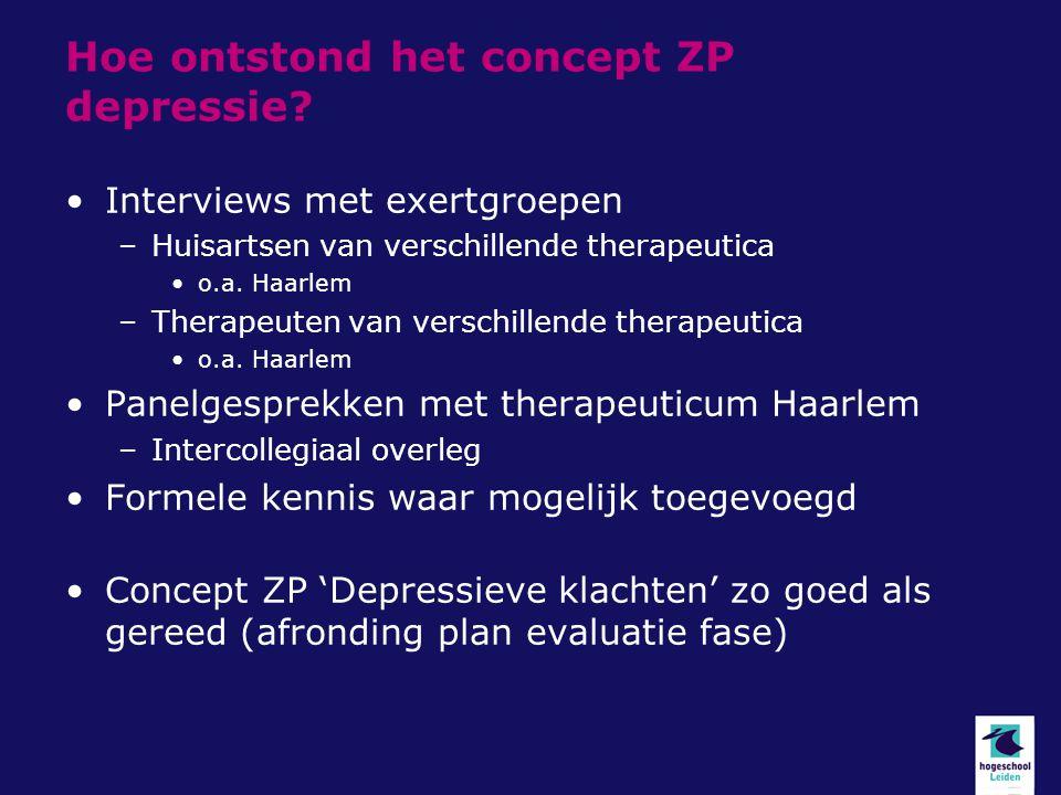 Hoe ontstond het concept ZP depressie? Interviews met exertgroepen –Huisartsen van verschillende therapeutica o.a. Haarlem –Therapeuten van verschille