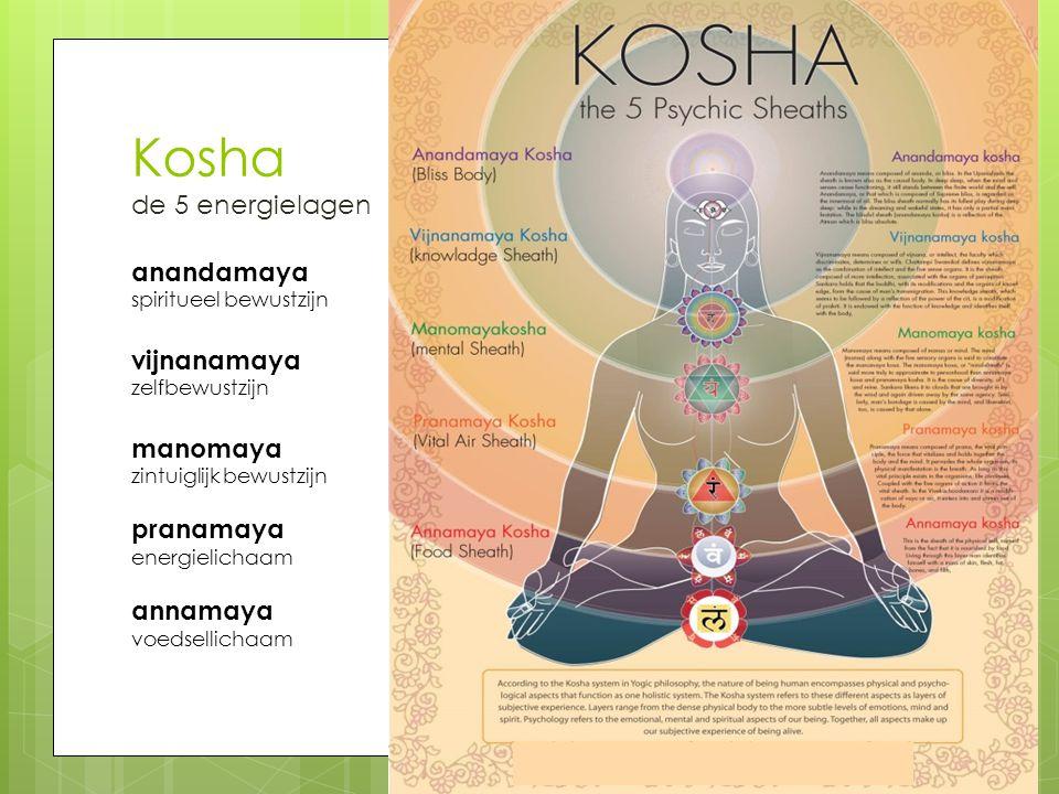 Kosha de 5 energielagen anandamaya spiritueel bewustzijn vijnanamaya zelfbewustzijn manomaya zintuiglijk bewustzijn pranamaya energielichaam annamaya