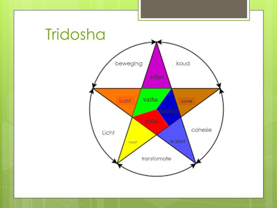 Tridosha bewegingkoud Licht transformatie cohesie aarde lucht vuur