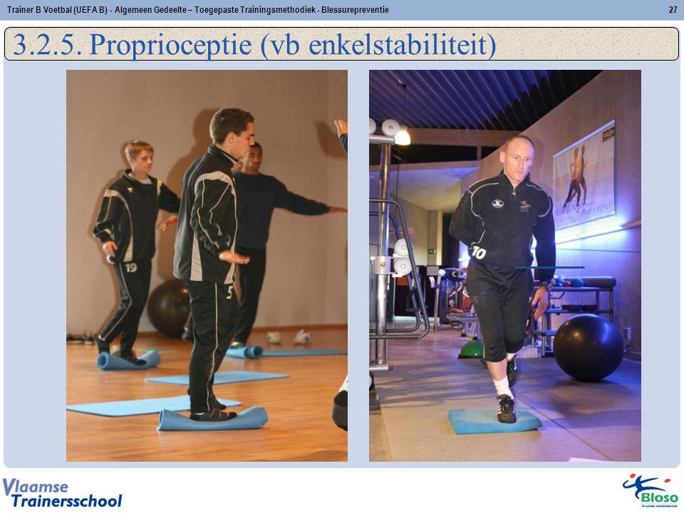 3.2.5. Proprioceptie (vb enkelstabiliteit) 27Trainer B Voetbal (UEFA B) - Algemeen Gedeelte – Toegepaste Trainingsmethodiek - Blessurepreventie