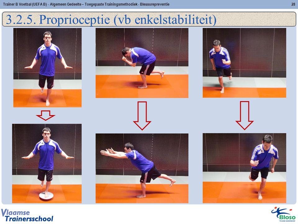 3.2.5. Proprioceptie (vb enkelstabiliteit) 28Trainer B Voetbal (UEFA B) - Algemeen Gedeelte – Toegepaste Trainingsmethodiek - Blessurepreventie