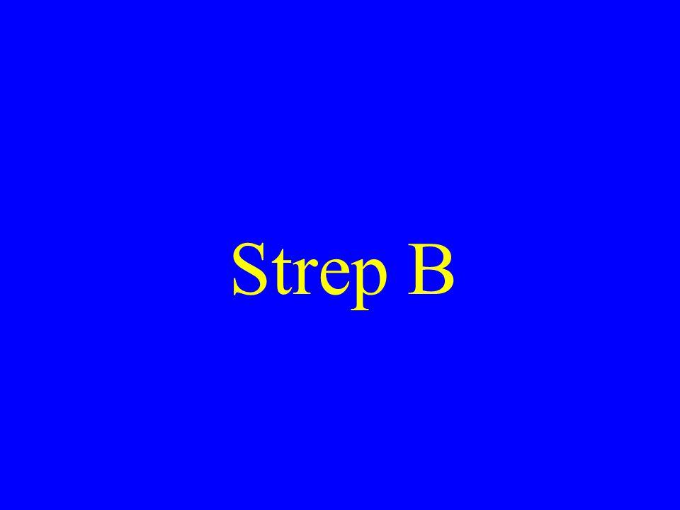 Strep B