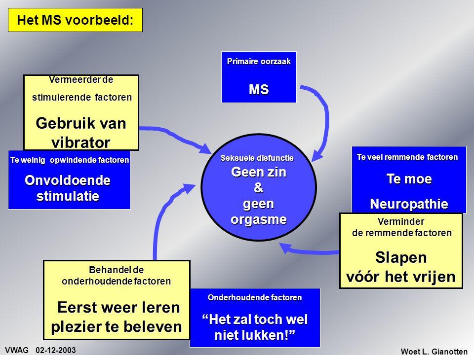 """VWAG 02-12-2003 Woet L. Gianotten Het MS voorbeeld: Primaire oorzaak MS Onderhoudende factoren """"Het zal toch wel niet lukken!"""" Te veel remmende factor"""