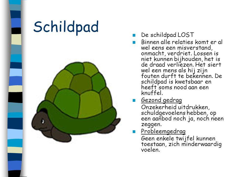 Schildpad De schildpad LOST Binnen alle relaties komt er al wel eens een misverstand, onmacht, verdriet. Lossen is niet kunnen bijhouden, het is de dr