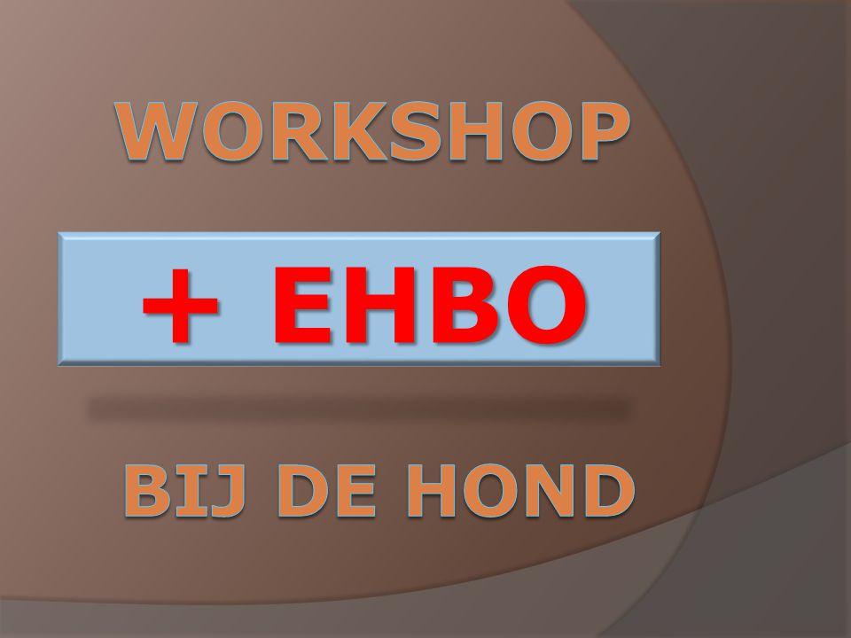 + EHBO