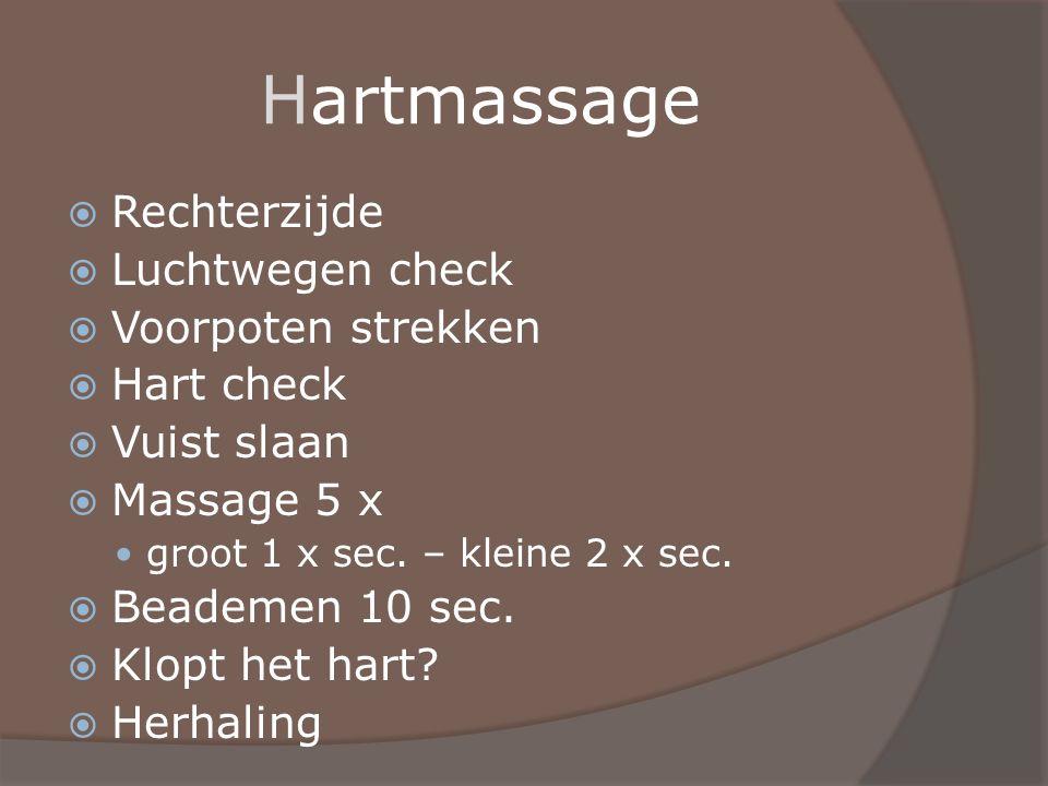 Hartmassage  Rechterzijde  Luchtwegen check  Voorpoten strekken  Hart check  Vuist slaan  Massage 5 x groot 1 x sec. – kleine 2 x sec.  Beademe