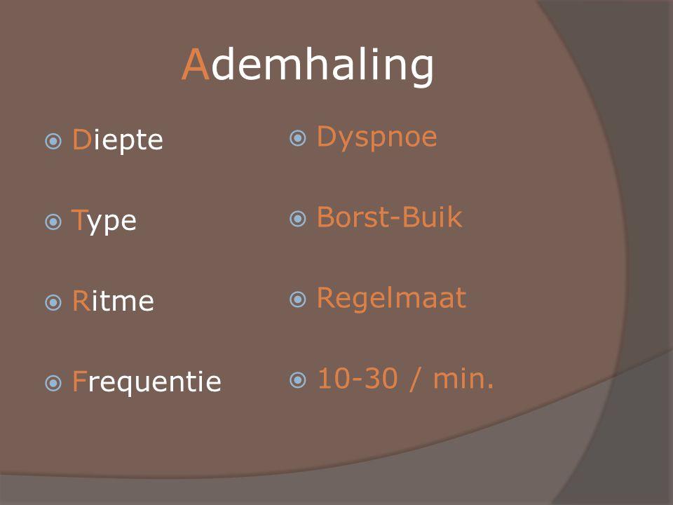 Ademhaling  Diepte  Type  Ritme  Frequentie  Dyspnoe  Borst-Buik  Regelmaat  10-30 / min.