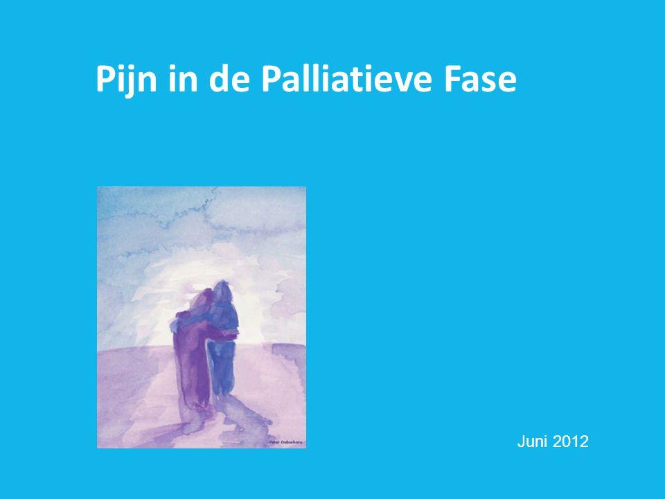 Medicamenteuze pijnbehandeling  Medicatie op geleide van de pijn  Vast schema: Onderhoudsbehandeling: langwerkend.