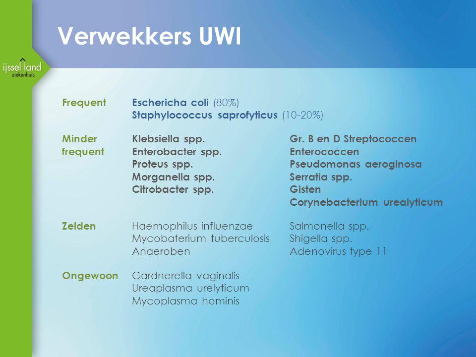 Verwekkers UWI FrequentEschericha coli (80%) Staphylococcus saprofyticus (10-20%) Minder frequent Klebsiella spp.