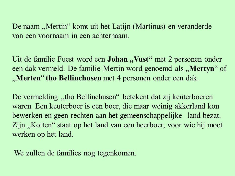"""Uit de familie Fuest word een Johan """"Vust"""" met 2 personen onder een dak vermeld. De familie Mertin word genoemd als """"Mertyn"""" of """"Merten"""" tho Bellinchu"""