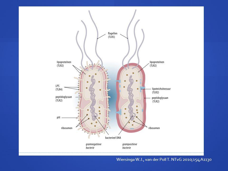 Wiersinga W.J., van der Poll T. NTvG 2010;154;A1130