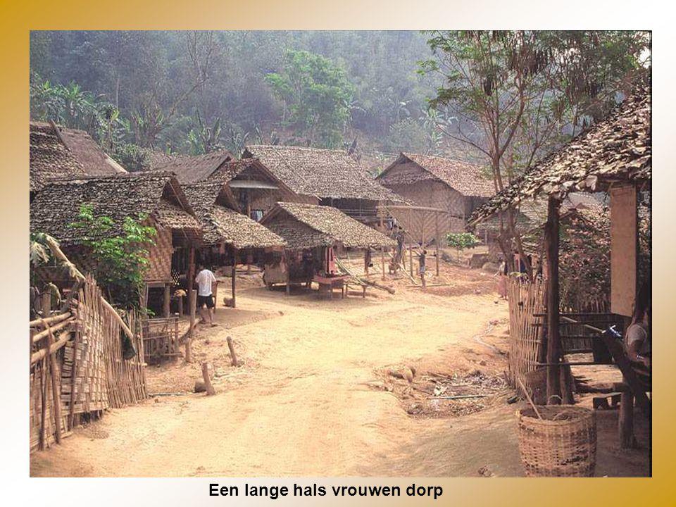 Een lange hals vrouwen dorp