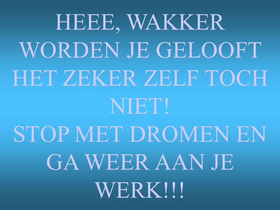 HEEE, WAKKER WORDEN JE GELOOFT HET ZEKER ZELF TOCH NIET! STOP MET DROMEN EN GA WEER AAN JE WERK!!!