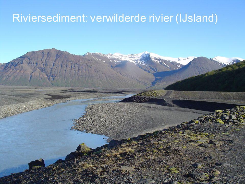 Riviersediment: verwilderde rivier (IJsland)