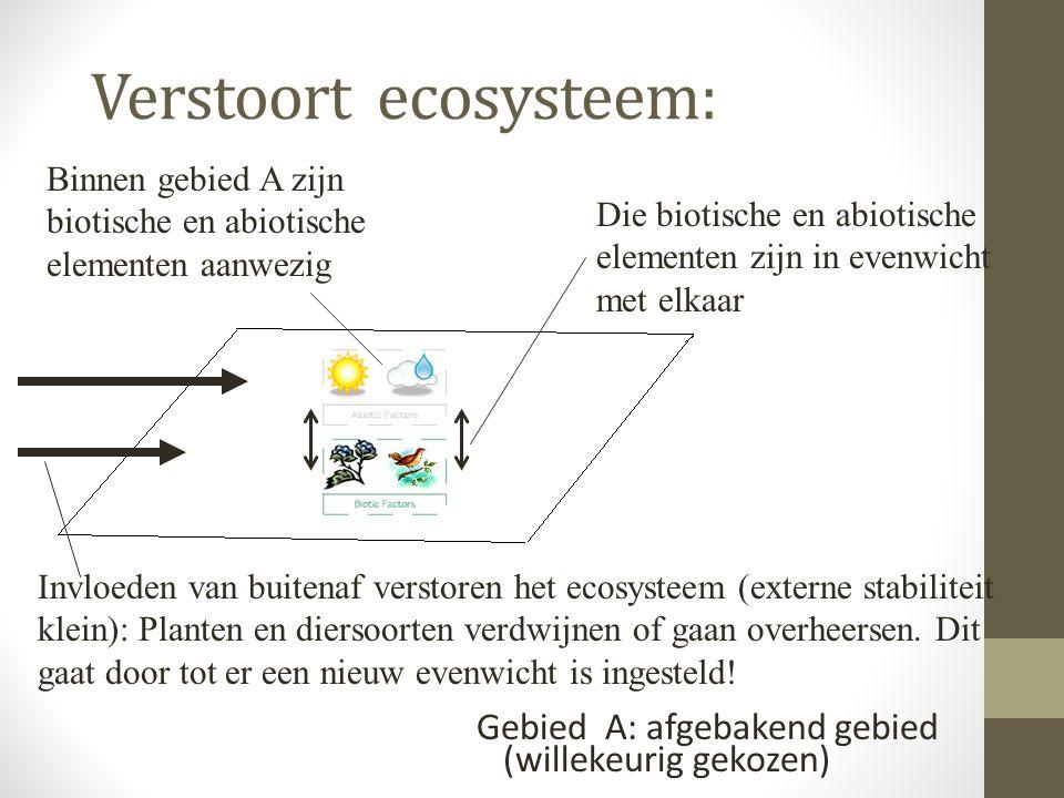 Verstoort ecosysteem: Gebied A: afgebakend gebied (willekeurig gekozen) Binnen gebied A zijn biotische en abiotische elementen aanwezig Die biotische