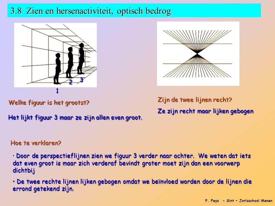 P. Feys - Sint – Jorisschool Menen 3.8 Zien en hersenactiviteit, optisch bedrog Welke figuur is het grootst? 1 2 3 Het lijkt figuur 3 maar ze zijn all