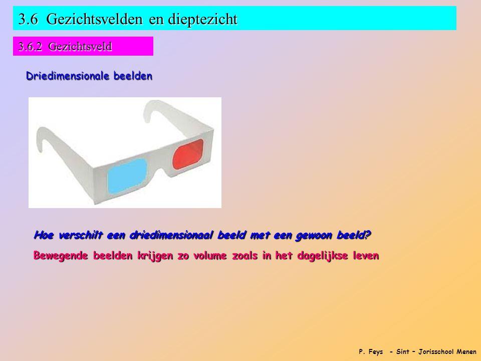 P. Feys - Sint – Jorisschool Menen 3.6 Gezichtsvelden en dieptezicht 3.6.2 Gezichtsveld Driedimensionale beelden Hoe verschilt een driedimensionaal be