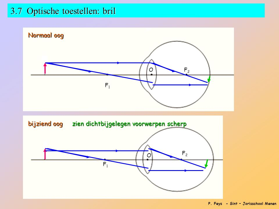 P. Feys - Sint – Jorisschool Menen 3.7 Optische toestellen: bril Werking van het oog