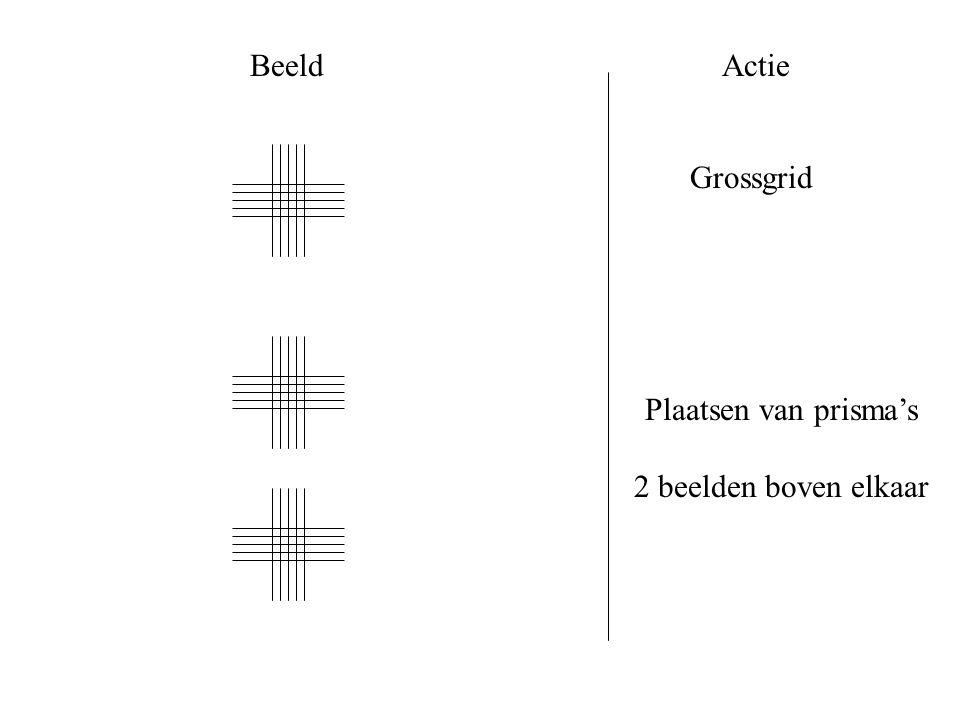 BeeldActie Grossgrid Plaatsen van prisma's 2 beelden boven elkaar