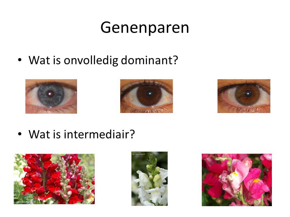 Genenparen Wat is onvolledig dominant? Wat is intermediair?
