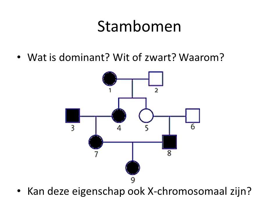 Stambomen Wat is dominant? Wit of zwart? Waarom? Kan deze eigenschap ook X-chromosomaal zijn?