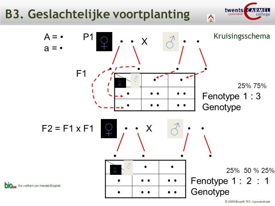 © 2009 Biosoft TCC - Lyceumstraat B3. Geslachtelijke voortplanting A = a = X ♀ ♂ F1 ♀ ♂ F2 = F1 x F1 ♀ ♂ P1 X ♀ ♂ 25% 75% Fenotype 1 : 3 Genotype 25%