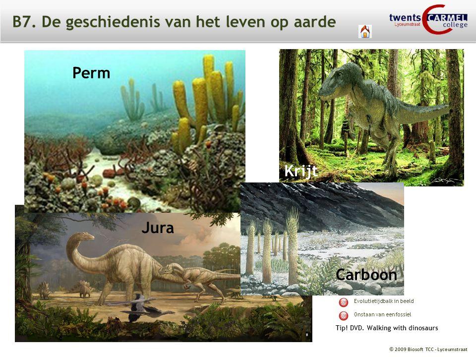 © 2009 Biosoft TCC - Lyceumstraat B7. De geschiedenis van het leven op aarde Krijt Perm Jura Carboon Tip! DVD. Walking with dinosaurs Evolutietijdbalk