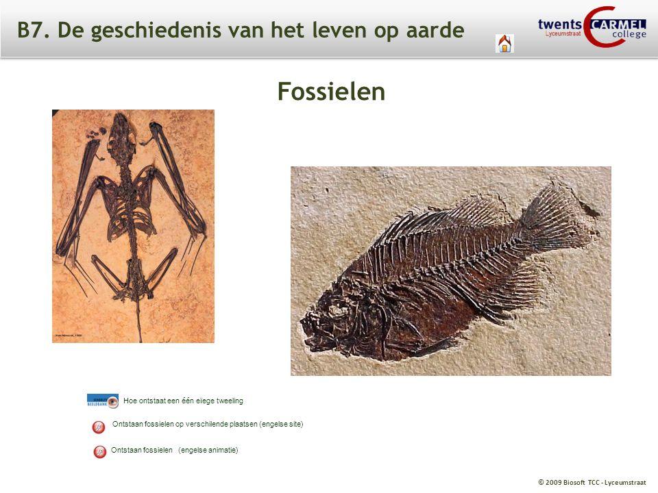 © 2009 Biosoft TCC - Lyceumstraat B7. De geschiedenis van het leven op aarde Ontstaan fossielen (engelse animatie) Ontstaan fossielen op verschilende
