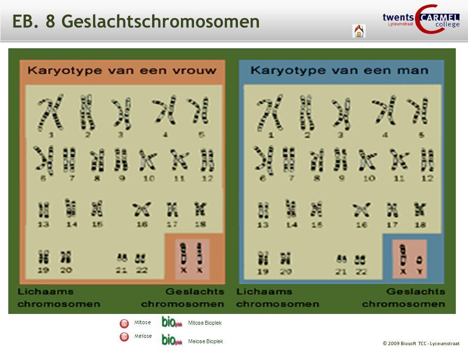 © 2009 Biosoft TCC - Lyceumstraat EB. 8 Geslachtschromosomen Mitose Meïose Mitose Bioplek Meiose Bioplek