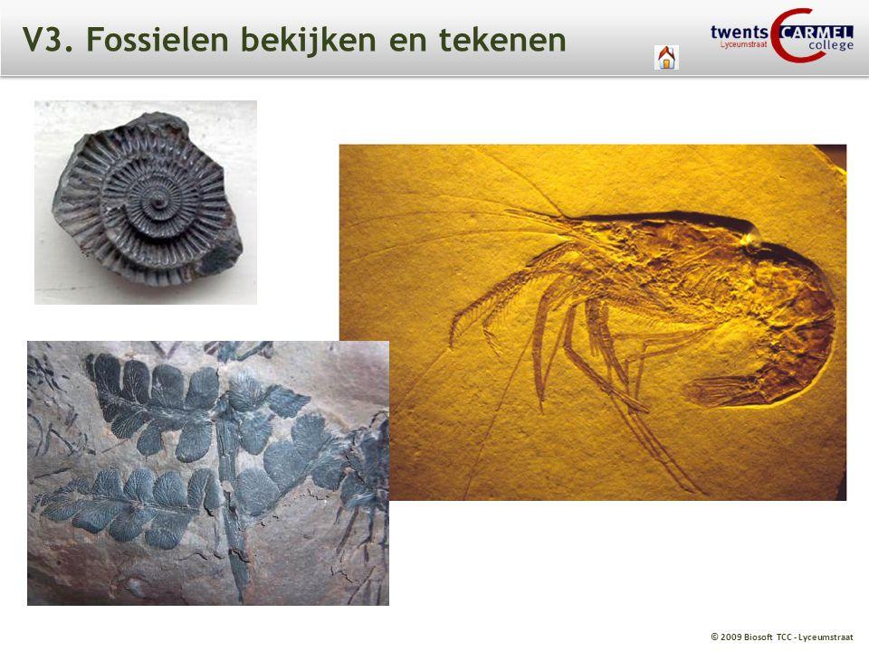 © 2009 Biosoft TCC - Lyceumstraat V3. Fossielen bekijken en tekenen