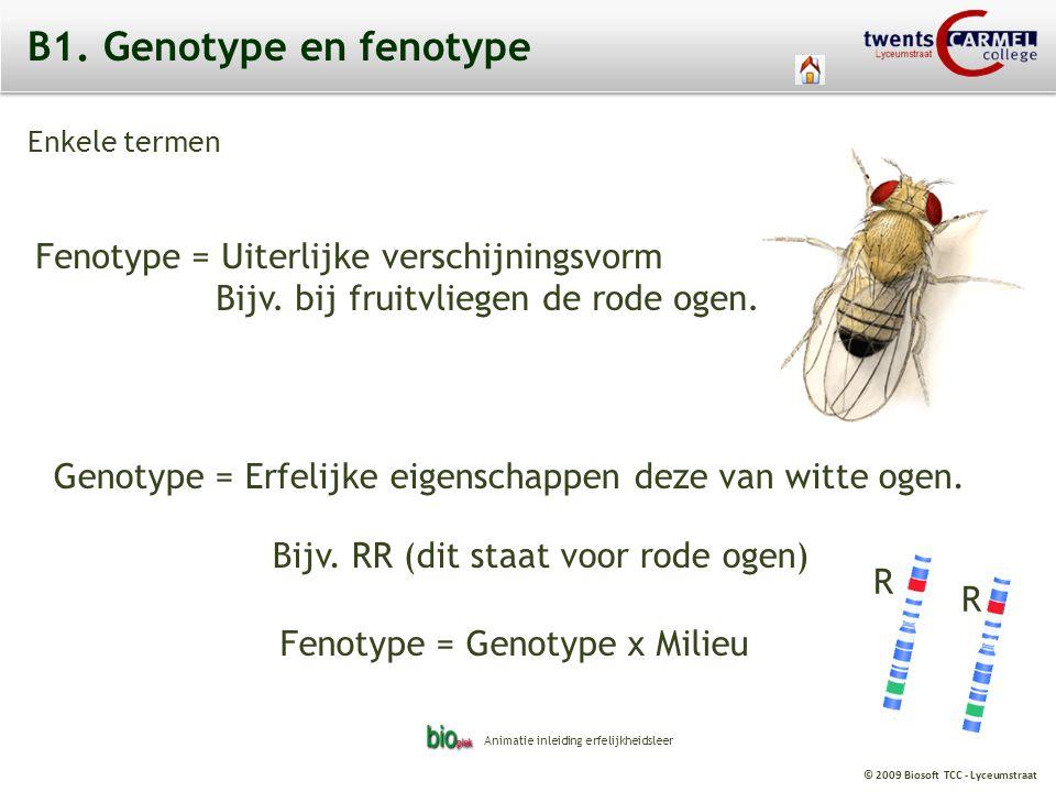© 2009 Biosoft TCC - Lyceumstraat B1. Genotype en fenotype Fenotype = Uiterlijke verschijningsvorm Bijv. bij fruitvliegen de rode ogen. Genotype = Erf