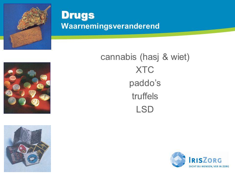 Drugs Drugs Waarnemingsveranderend cannabis (hasj & wiet) XTC paddo's truffels LSD