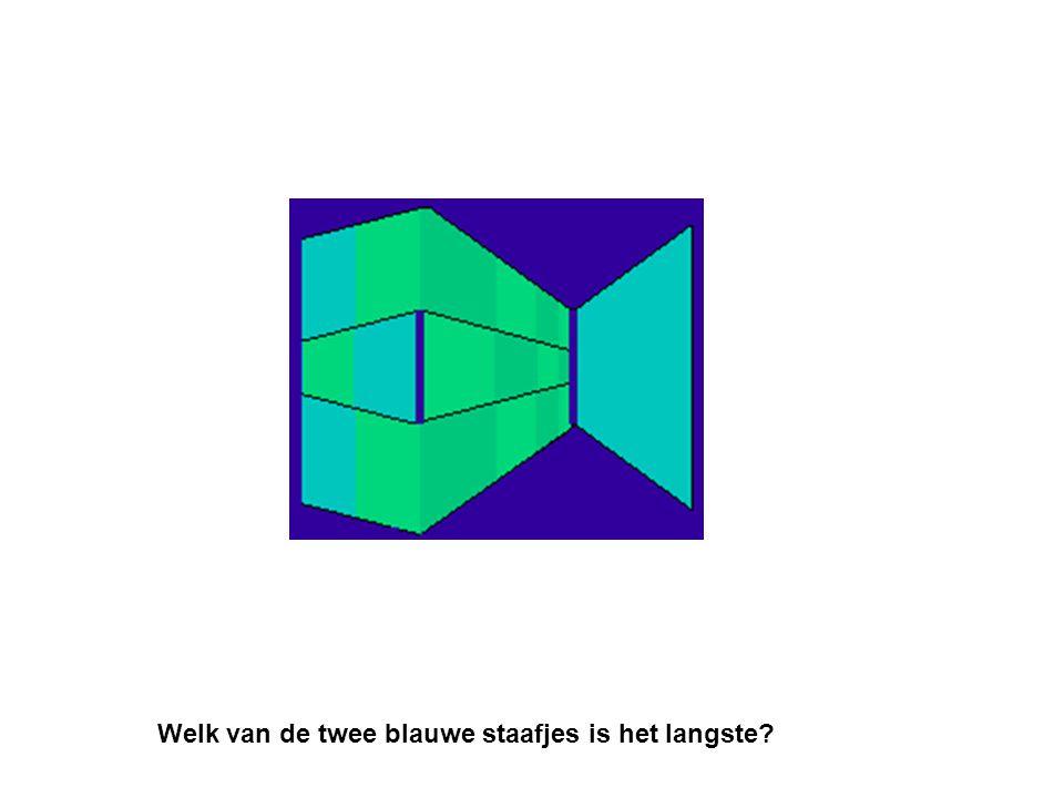 Welk van de twee blauwe staafjes is het langste?