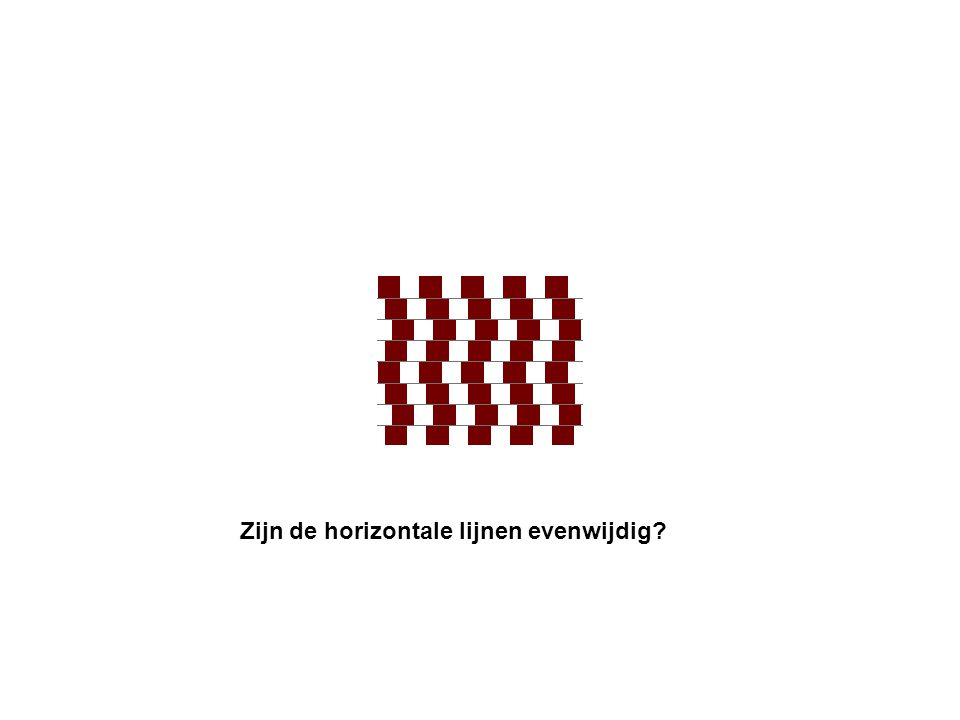 Zijn de horizontale lijnen evenwijdig?
