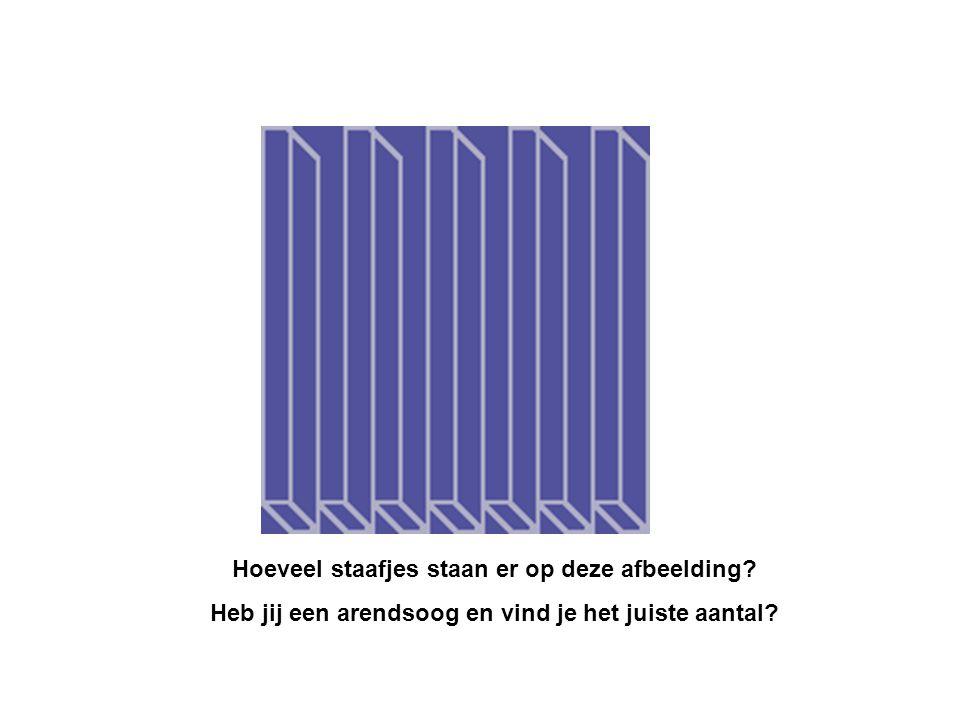 Hoeveel staafjes staan er op deze afbeelding? Heb jij een arendsoog en vind je het juiste aantal?