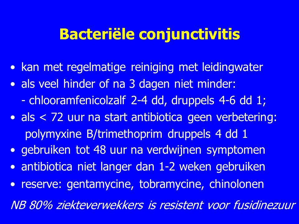 Bacteriële conjunctivitis kan met regelmatige reiniging met leidingwater als veel hinder of na 3 dagen niet minder: - chlooramfenicolzalf 2-4 dd, druppels 4-6 dd 1; als < 72 uur na start antibiotica geen verbetering: polymyxine B/trimethoprim druppels 4 dd 1 gebruiken tot 48 uur na verdwijnen symptomen antibiotica niet langer dan 1-2 weken gebruiken reserve: gentamycine, tobramycine, chinolonen NB 80% ziekteverwekkers is resistent voor fusidinezuur